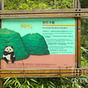 Panda Sign In Wolong Nature Reserve Art Print