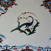Peackok Art Print