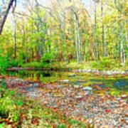 Pennsylvania Stream In Autumn, Digital Art Art Print
