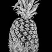 Pineapple Isolated On Black Art Print