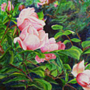 Pink Cascade Art Print