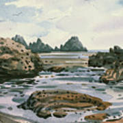 Point Lobos Art Print by Donald Maier