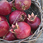 Pomegranates In A Basket Art Print