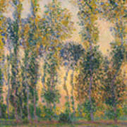 Poplars At Giverny, Sunrise Art Print