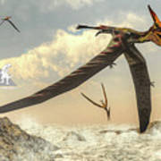 Pteranodon Birds Flying - 3d Render Art Print