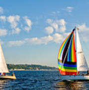 Rainbow Sails Art Print