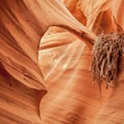 Rattlesnake Canyon, Page, Arizona Art Print