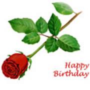 Red Rose Happy Birthday  Art Print