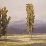 Reserve Cottonwoods Art Print