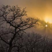 Rime Ice And Fog At Sunset - Telephoto Art Print