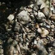 River Stones Art Print