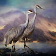 Rocky Mountain Sandhill Cranes Art Print