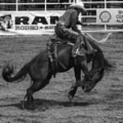 Rodeo Saddleback Riding 5 Art Print