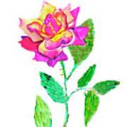 Rose, Watercolor Painting Art Print
