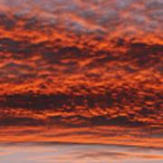 Rosy Sky Art Print