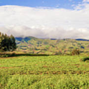 Rural Landscape Tanzania Art Print
