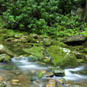 Rushing Mountain Stream Art Print