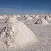 Salt Production Art Print