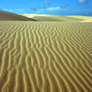 Sandy Desert Art Print by MotHaiBaPhoto Prints