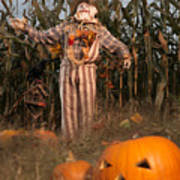 Scarecrow In A Corn Field Art Print