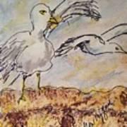 Seagull Salute Art Print
