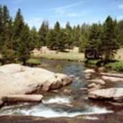 Sierra Nevada Mountain Stream Art Print