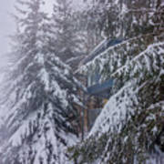 Snow Covered Trees In The North Carolina Mountains During Winter Art Print