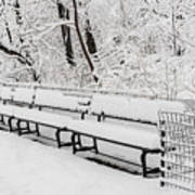 Snow In Central Park Nyc Art Print
