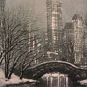 Snow In Central Park Art Print by Tom Shropshire