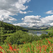 Snowdonia Lake Art Print