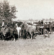 South Dakota: Cowboys Art Print