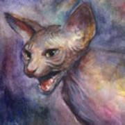 Sphynx Cat Painting Art Print
