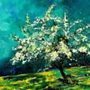 Spring 67 Art Print