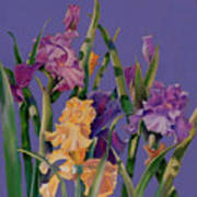 Spring Recital Art Print