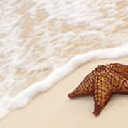 Starfish And Ocean Wave Print by Elena Elisseeva
