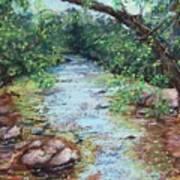 Stephens State Park Art Print