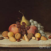 Still Life With Fruit And Nuts Art Print