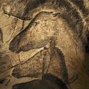 Stone-age Cave Paintings, Chauvet, France Art Print
