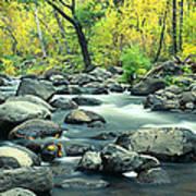 Stream In Cottonwood Canyon, Sedona Art Print