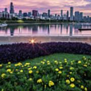 summer flowers and Chicago skyline Art Print