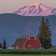 Sunset Reflection On Mt. Baker Art Print