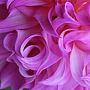 Swirls Of Romance Art Print