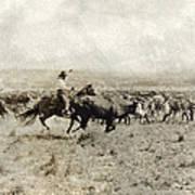 Texas: Cowboy, C1908 Art Print