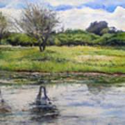 Thamalakane River At Maun Botswana 2008  Art Print