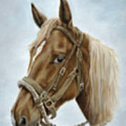 The Boss' Mount Art Print by Cathy Cleveland