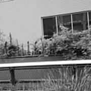 The High Line 151 Art Print
