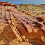 The Many Colors Of Valley Of Fire Art Print