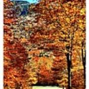 The Richness Of Autumn Treasures Art Print