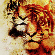 Tiger Collage On Color Abstract Background And Mandala With Ornament Wildlife Animals Poster