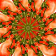 Tomato Kaleidoscope Art Print